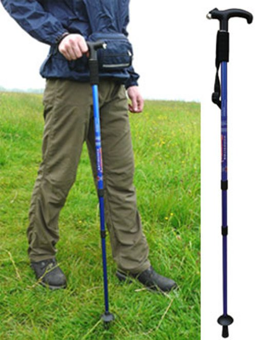 Alloy Hiking Stick With LED Light picture