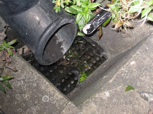 Drain Covers picture