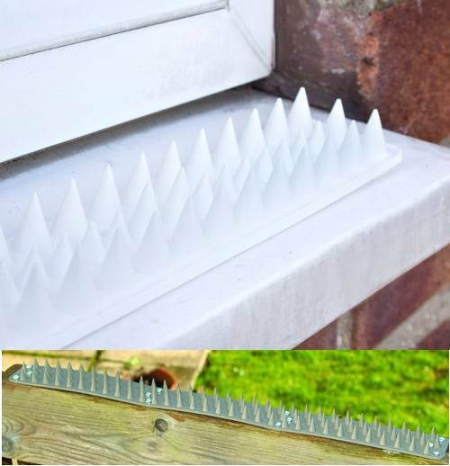 Security Spikes picture