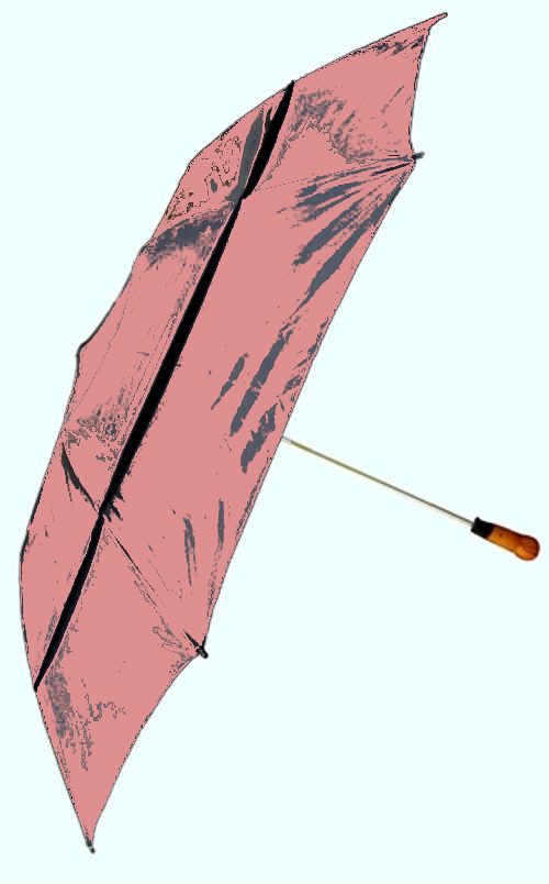 Windproof Umbrella in Pink picture