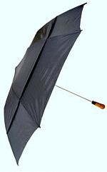 Windproof Umbrella picture click to read more