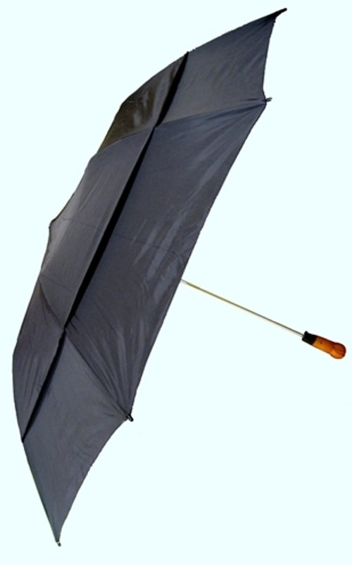 Windproof Umbrella picture